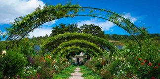 How-to-Landscape-Your-Garden-in-The-Best-Way-Possible-on-highqualityblog